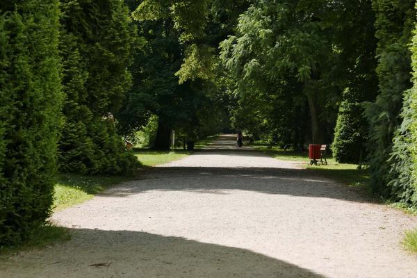 Arboretum Kórnickie