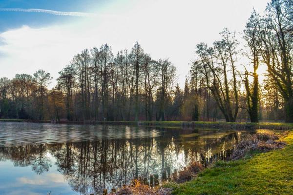 Arboretum Kórnickie - fot. Tomasz Frąckowiak