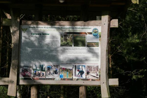 Ścieżka Bobrowy Szlak - Czmoniec